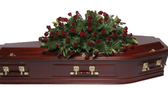 Roseclass-Double-Ended-Small-Red-Roses-1024x536