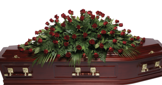 Rsignature-Double-Ended-Medium-Size-Red-Roses-1024x536