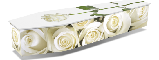 WHITE-ROSES-w-DROPSHADOWS-1024x536