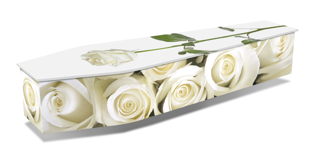 WHITE-ROSES-w-DROPSHADOWS-1024x536.png